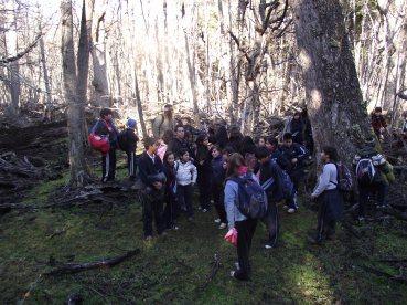 Una antigua represa creada por castores que en el momento se encontraba abandonada sin agua. Los niños conocieron del daños provocados por esta especie invasora
