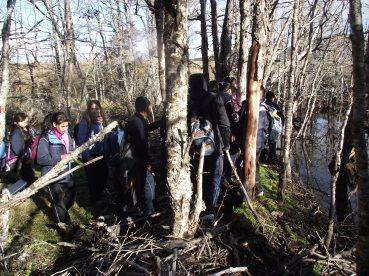 Recorriendo la cuenca del río San Juan y reconociendo un sitio invadido por castor en el ecosistema de Magallanes