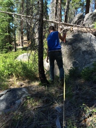Jamie, uno de nuestros practicantes caminando con huincha para medir 50 m de área basal